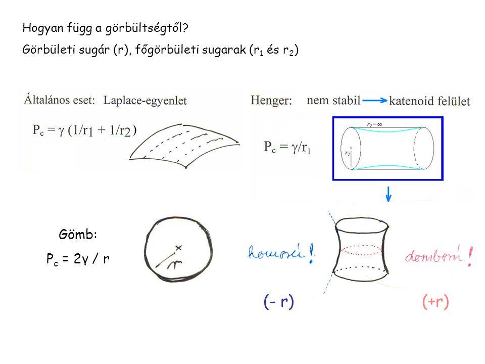 (- r)(+r) Hogyan függ a görbültségtől? Görbületi sugár (r), főgörbületi sugarak (r 1 és r 2 ) Gömb: P c = 2γ / r