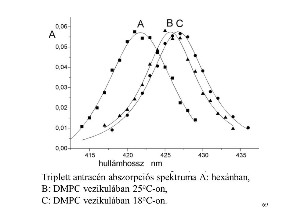 69 Triplett antracén abszorpciós spektruma A: hexánban, B: DMPC vezikulában 25 o C-on, C: DMPC vezikulában 18 o C-on.