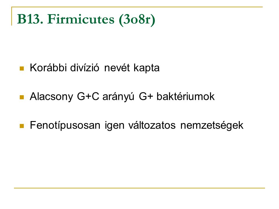 Korábbi divízió nevét kapta Alacsony G+C arányú G+ baktériumok Fenotípusosan igen változatos nemzetségek B13. Firmicutes (3o8r)