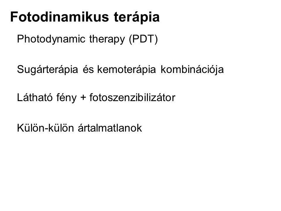 Fotodinamikus terápia Photodynamic therapy (PDT) Sugárterápia és kemoterápia kombinációja Látható fény + fotoszenzibilizátor Külön-külön ártalmatlanok