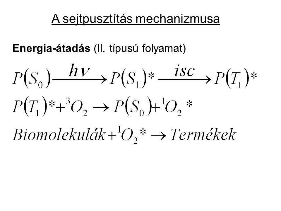 A sejtpusztítás mechanizmusa Energia-átadás (II. típusú folyamat)