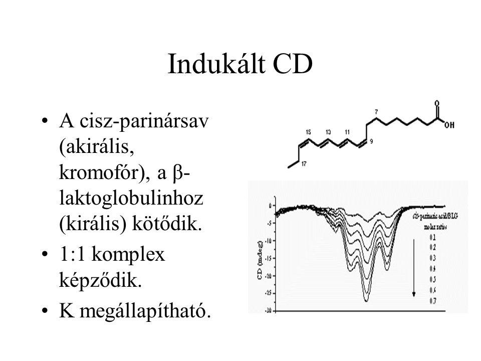 Indukált CD A cisz-parinársav (akirális, kromofór), a β- laktoglobulinhoz (királis) kötődik. 1:1 komplex képződik. K megállapítható.