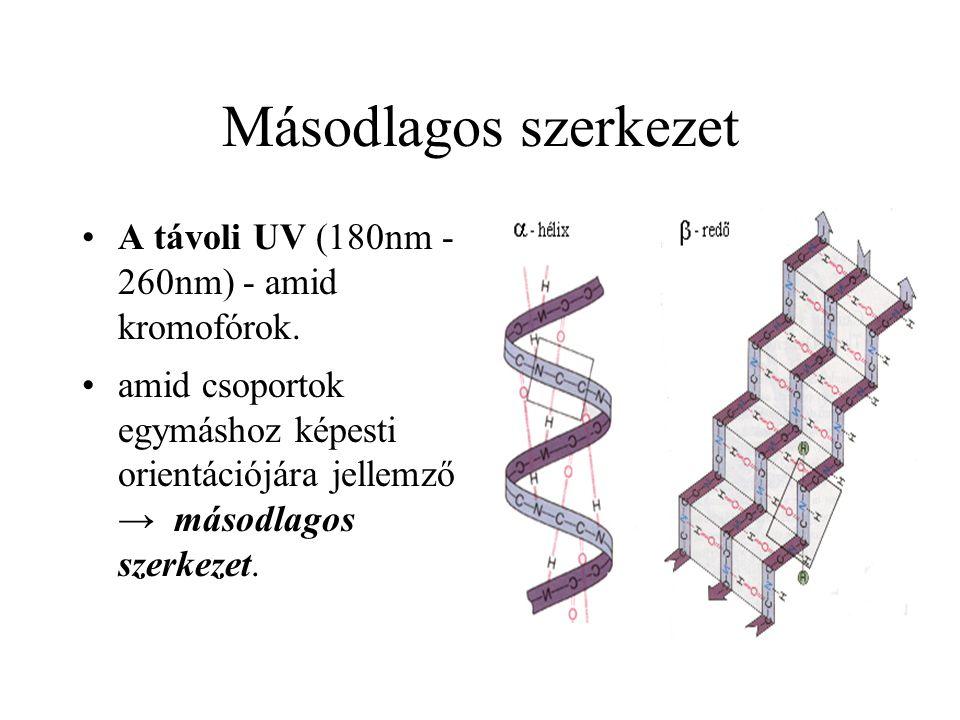 Másodlagos szerkezet A távoli UV (180nm - 260nm) - amid kromofórok. amid csoportok egymáshoz képesti orientációjára jellemző → másodlagos szerkezet.