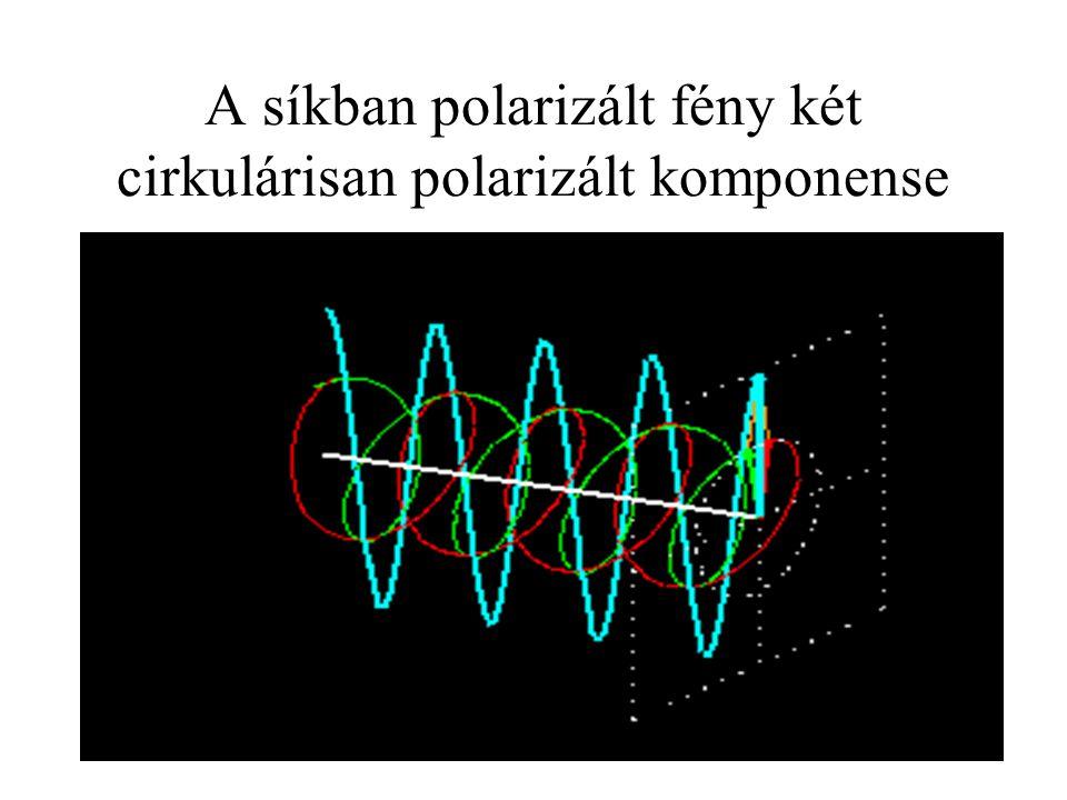 A síkban polarizált fény két cirkulárisan polarizált komponense