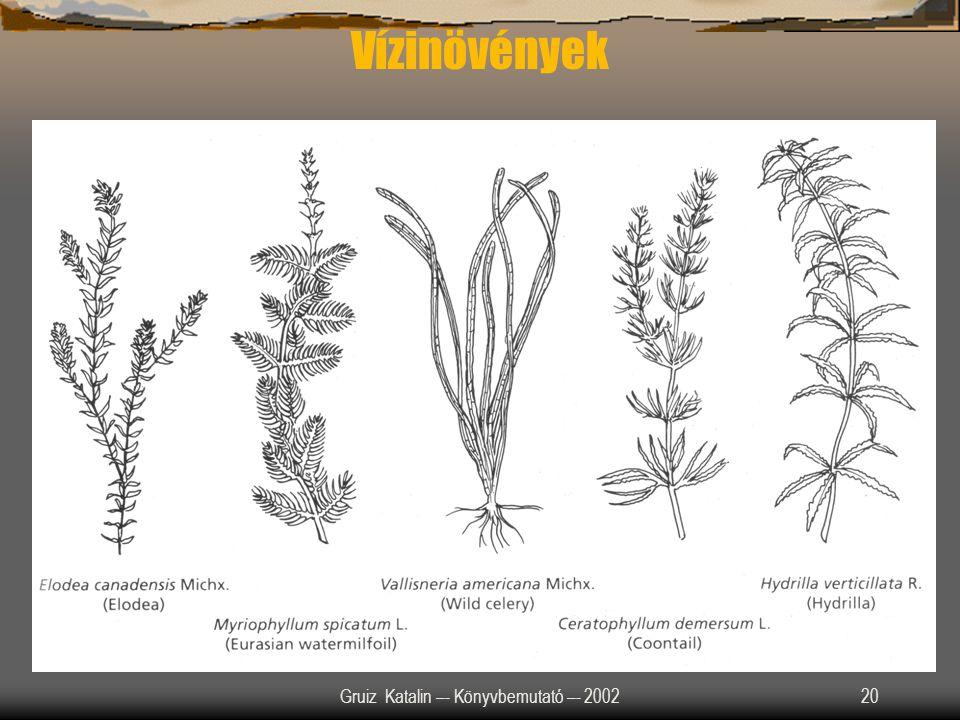 Gruiz Katalin –- Könyvbemutató –- 200220 Vízinövények