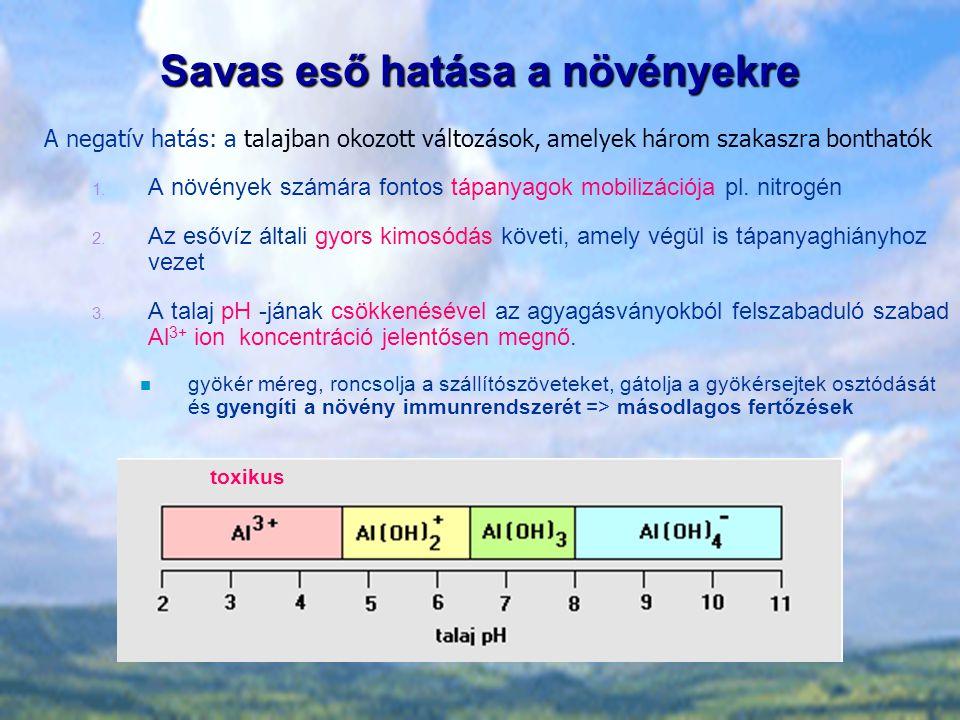 Savas eső hatása a növényekre A negatív hatás: a talajban okozott változások, amelyek három szakaszra bonthatók 1. A növények számára fontos tápanyago