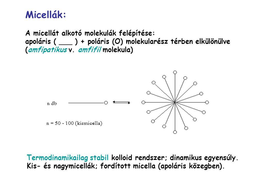 Micellák: A micellát alkotó molekulák felépítése: apoláris ( ___ ) + poláris (O) molekularész térben elkülönülve (amfipatikus v. amfifil molekula) Ter