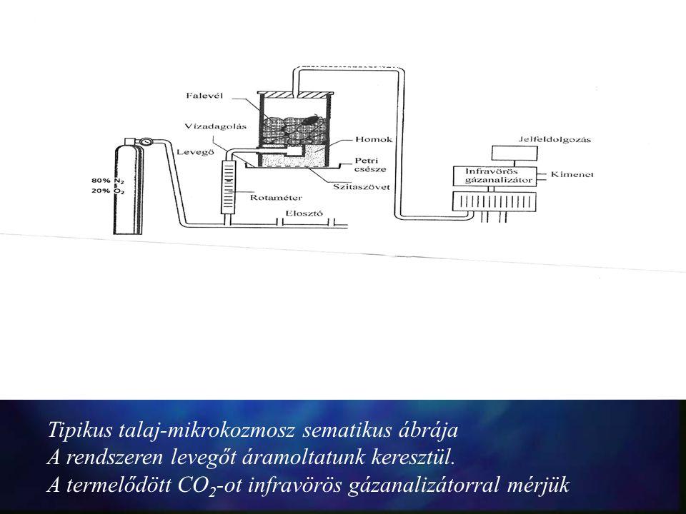 24.ábra: Tipikus talaj-mikrokozmosz sematikus ábrája Tipikus talaj-mikrokozmosz sematikus ábrája A rendszeren levegőt áramoltatunk keresztül. A termel