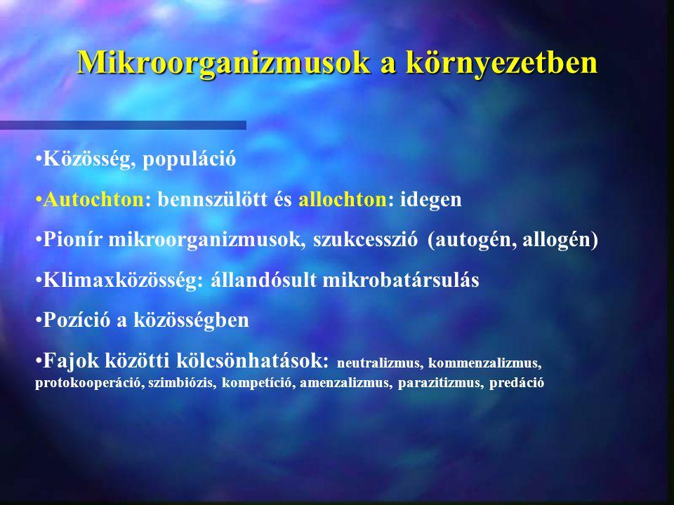 Mikroorganizmusok a környezetben Közösség, populáció Autochton: bennszülött és allochton: idegen Pionír mikroorganizmusok, szukcesszió (autogén, allog