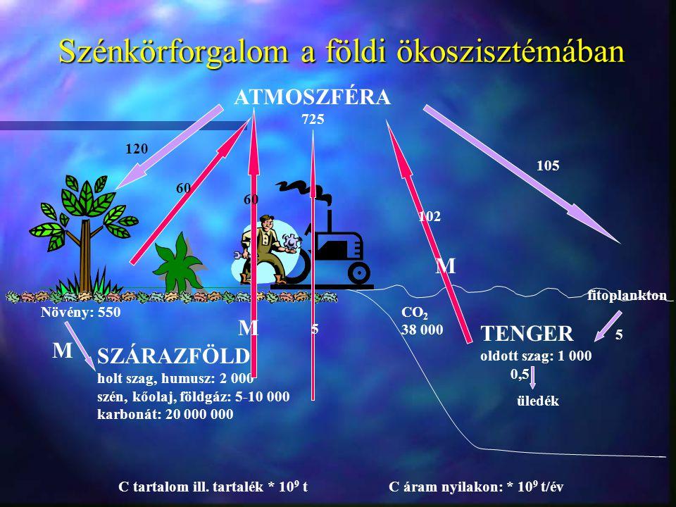 Szénkörforgalom a földi ökoszisztémában ATMOSZFÉRA 725 SZÁRAZFÖLD holt szag, humusz: 2 000 szén, kőolaj, földgáz: 5-10 000 karbonát: 20 000 000 TENGER