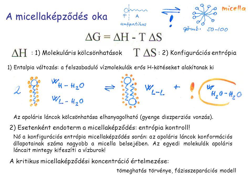A micellaképződés oka : 1) Molekuláris kölcsönhatások : 2) Konfigurációs entrópia 1) Entalpia változás: a felszabaduló vízmolekulák erős H-kötéseket alakítanak ki Az apoláris láncok kölcsönhatása elhanyagolható (gyenge diszperziós vonzás).