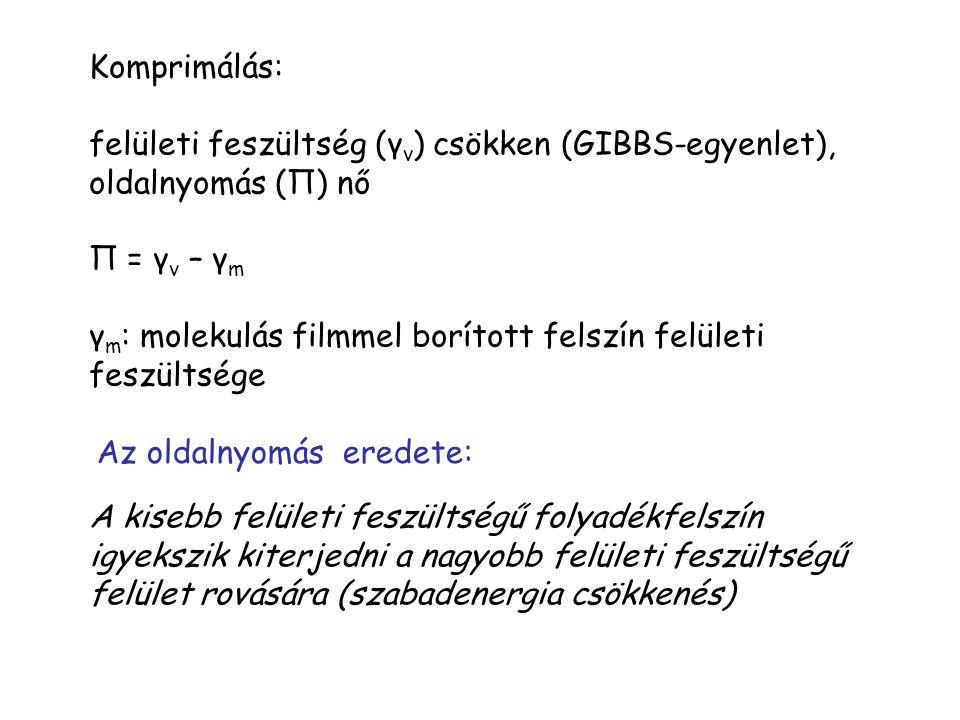 Komprimálás: felületi feszültség (γ v ) csökken (GIBBS-egyenlet), oldalnyomás (П) nő П = γ v – γ m γ m : molekulás filmmel borított felszín felületi feszültsége A kisebb felületi feszültségű folyadékfelszín igyekszik kiterjedni a nagyobb felületi feszültségű felület rovására (szabadenergia csökkenés) Az oldalnyomás eredete: