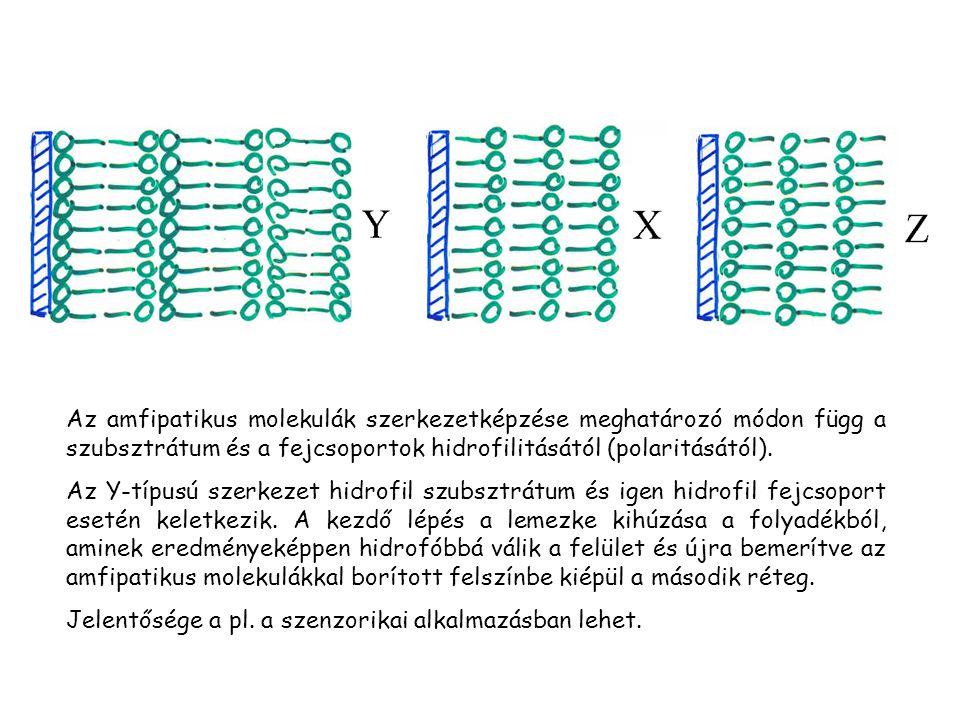 Az amfipatikus molekulák szerkezetképzése meghatározó módon függ a szubsztrátum és a fejcsoportok hidrofilitásától (polaritásától).