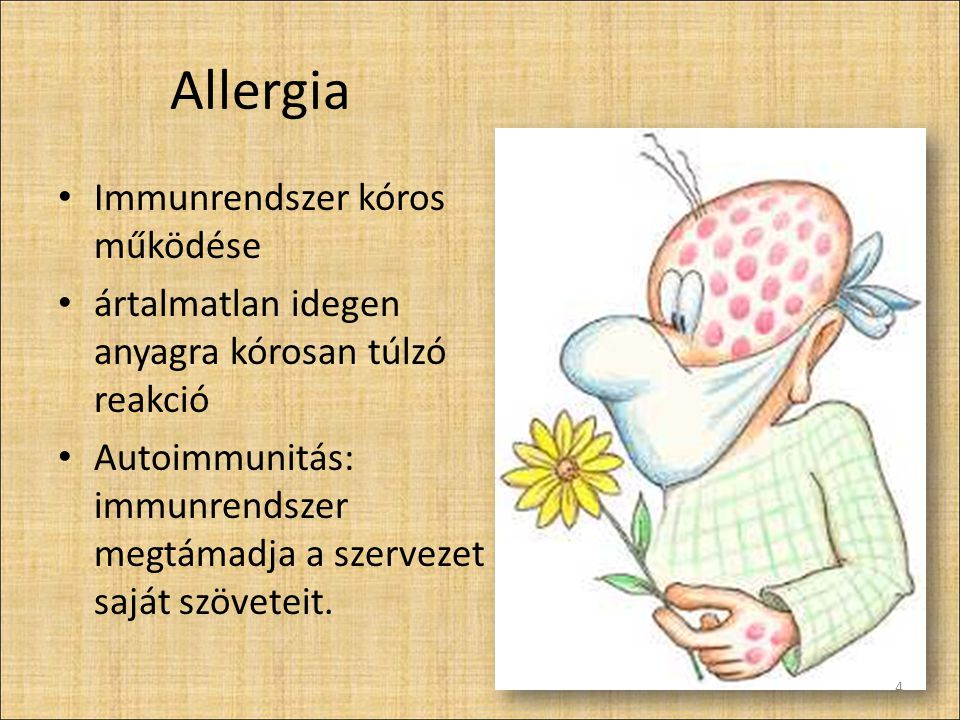 Allergia Immunrendszer kóros működése ártalmatlan idegen anyagra kórosan túlzó reakció Autoimmunitás: immunrendszer megtámadja a szervezet saját szöveteit.