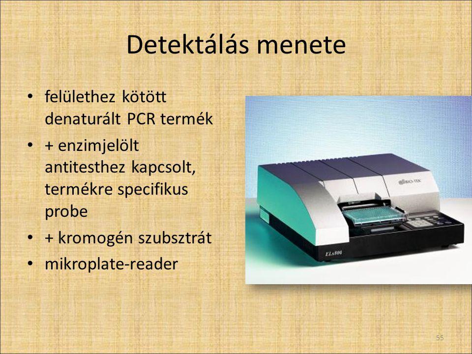 Detektálás menete felülethez kötött denaturált PCR termék + enzimjelölt antitesthez kapcsolt, termékre specifikus probe + kromogén szubsztrát mikropla
