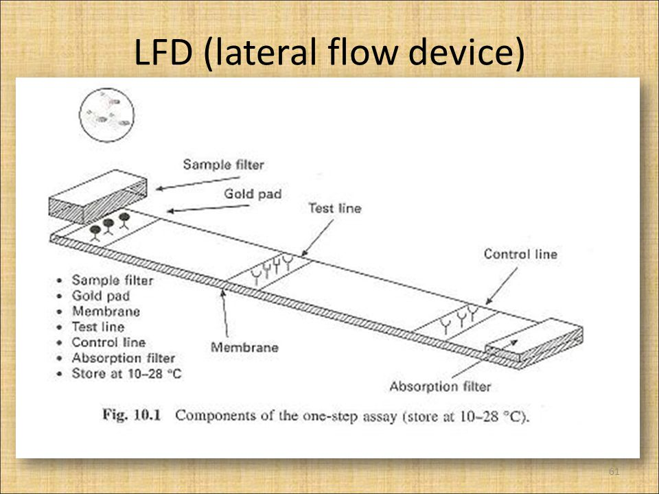 LFD (lateral flow device) 61