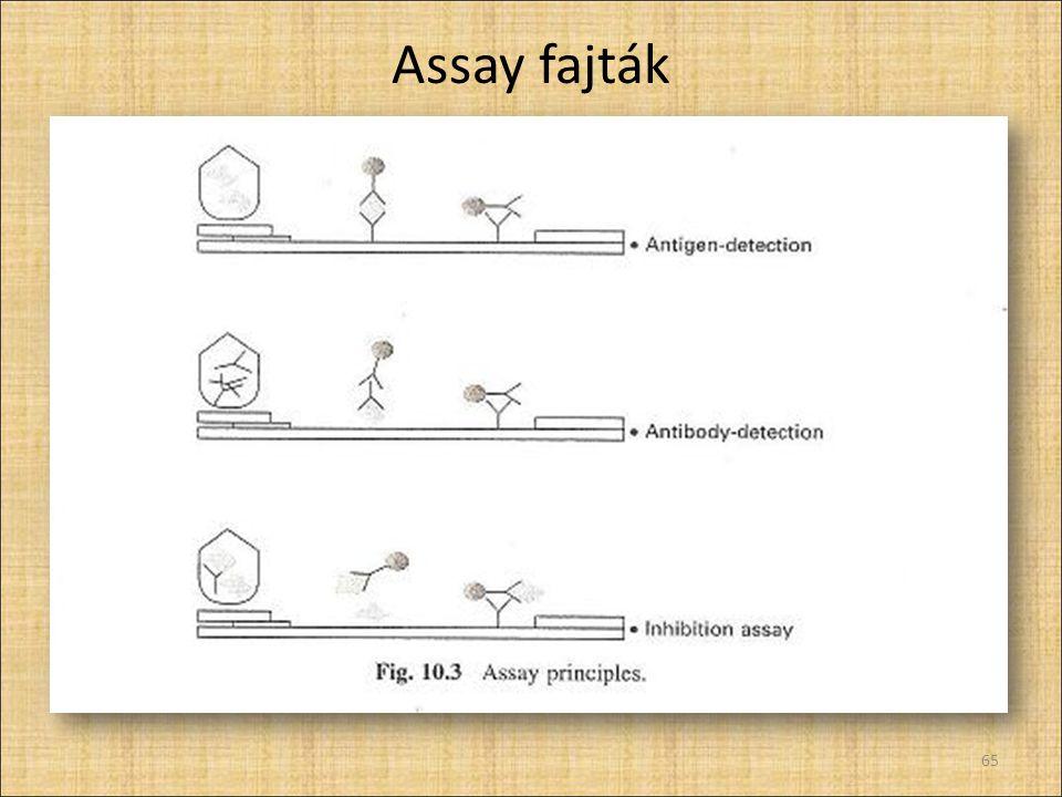 Assay fajták 65