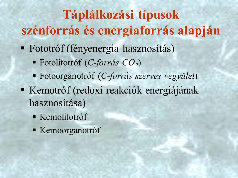 Táplálkozási típusok szénforrás és energiaforrás alapján  Fototróf (fényenergia hasznosítás)  Fotolitotróf (C-forrás CO 2 )  Fotoorganotróf (C-forrás szerves vegyület)  Kemotróf (redoxi reakciók energiájának hasznosítása)  Kemolitotróf  Kemoorganotróf