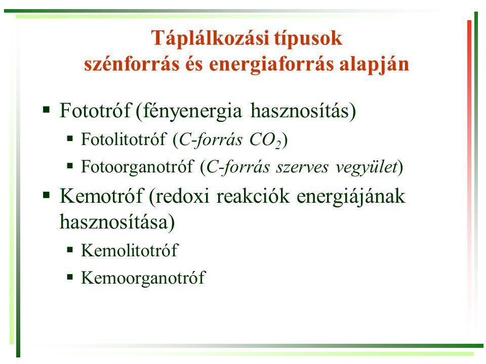 Táplálkozási típusok szénforrás és energiaforrás alapján  Fototróf (fényenergia hasznosítás)  Fotolitotróf (C-forrás CO 2 )  Fotoorganotróf (C-forr