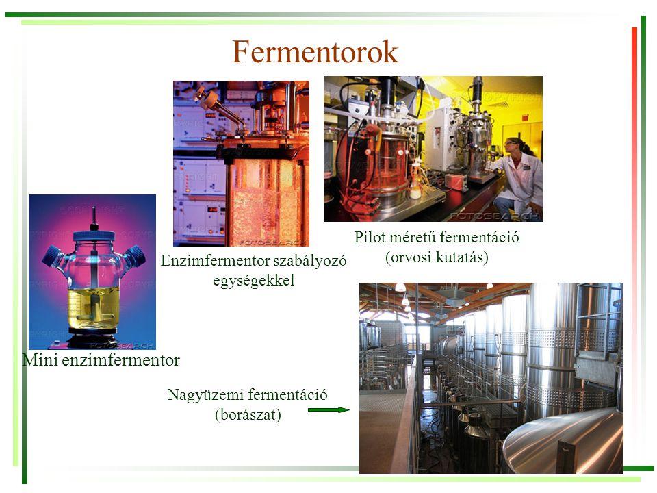 Fermentorok Mini enzimfermentor Enzimfermentor szabályozó egységekkel Pilot méretű fermentáció (orvosi kutatás) Nagyüzemi fermentáció (borászat)