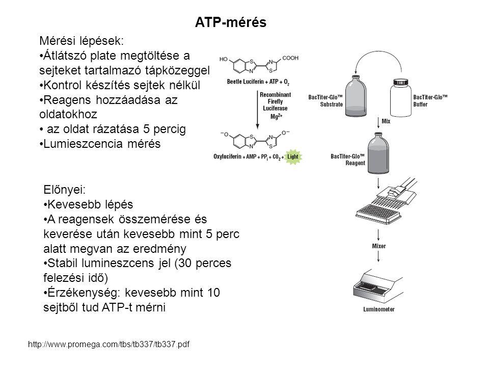 http://www.promega.com/tbs/tb337/tb337.pdf Előnyei: Kevesebb lépés A reagensek összemérése és keverése után kevesebb mint 5 perc alatt megvan az eredm