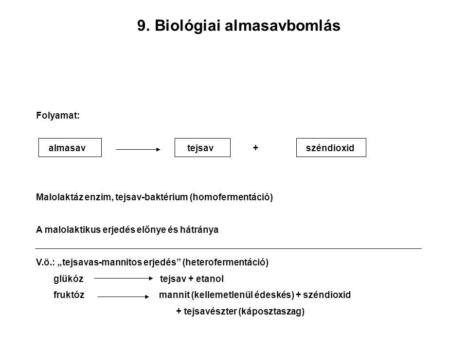 9. 9.Biológiai almasavbomlás Folyamat: almasav tejsav + széndioxid Malolaktáz enzim, tejsav-baktérium (homofermentáció) A malolaktikus erjedés előnye