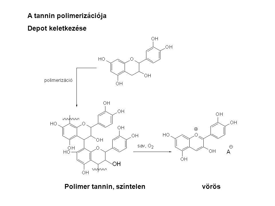 A tannin polimerizációja Depot keletkezése Polimer tannin, színtelenvörös