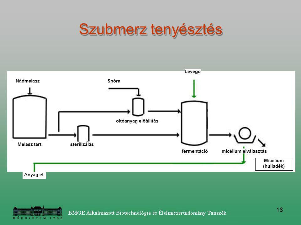 18 Anyag el. Nádmelasz Melasz tart. Spóra oltóanyag előállítás sterilizálás fermentáció Levegő micélium elválasztás Micélium (hulladék) Szubmerz tenyé