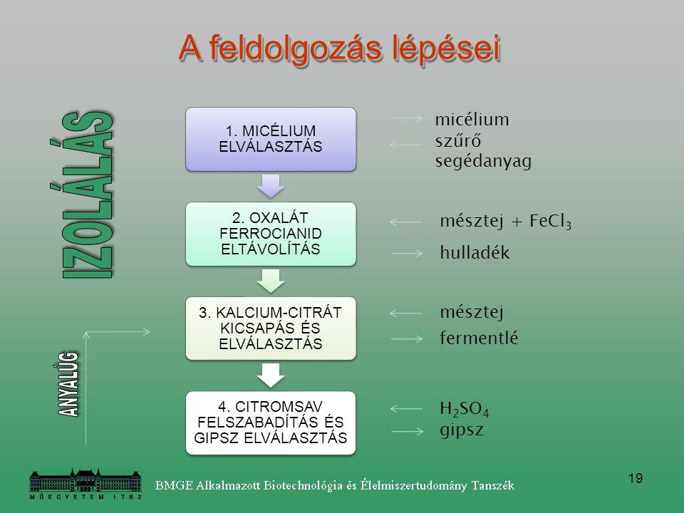 19 micélium szűrő segédanyag mésztej + FeCl 3 hulladék mésztej fermentlé H 2 SO 4 gipsz A feldolgozás lépései