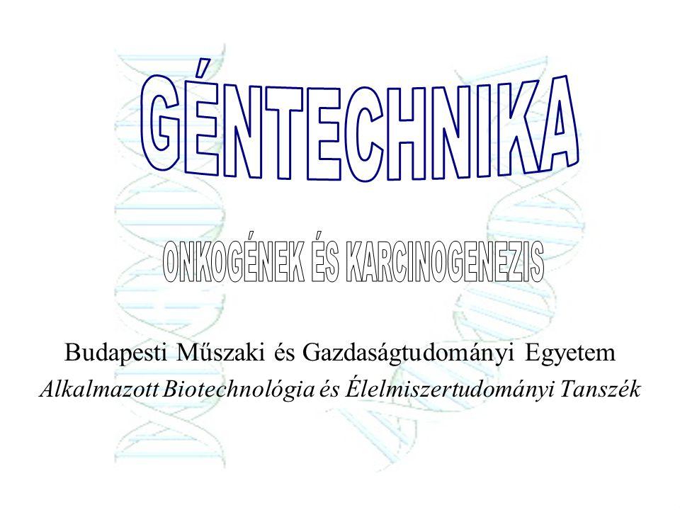 Budapesti Műszaki és Gazdaságtudományi Egyetem Alkalmazott Biotechnológia és Élelmiszertudományi Tanszék