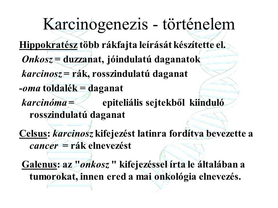 Karcinogenezis - történelem Hippokratész több rákfajta leírását készítette el. Onkosz = duzzanat, jóindulatú daganatok karcinosz = rák, rosszindulatú