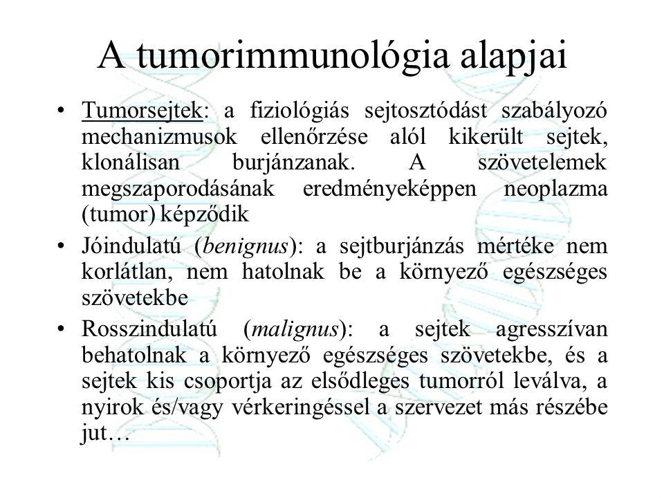 A tumorimmunológia alapjai Tumorsejtek: a fiziológiás sejtosztódást szabályozó mechanizmusok ellenőrzése alól kikerült sejtek, klonálisan burjánzanak.