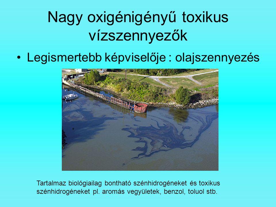 Nagy oxigénigényű toxikus vízszennyezők Legismertebb képviselője : olajszennyezés Tartalmaz biológiailag bontható szénhidrogéneket és toxikus szénhidr