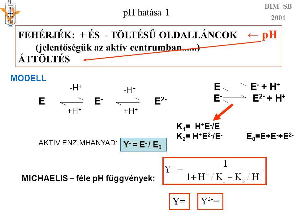 BIM SB 2001 Y i pH 1 Y Y - Y 2- Y= Y 2- = pH hatása 2 !