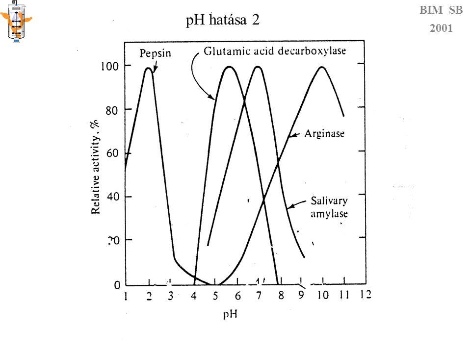 Hőmérséklet hatása BIM SB 2001 Kettős hatás Reakciósebesség nő Csökken: denaturálódás irreverzibilis reverzibilis E a E i KdKd 280-310 kJ/mol 900 kJ/mol K (H-híd 12,5-29,3 kJ/mol) Nagy: kis hőfokváltozásra érzékenyen reagál Mivel E 0 = E a + E i  = kombináció (β,k B,h,E 0,  S*) K m is függ T-től!