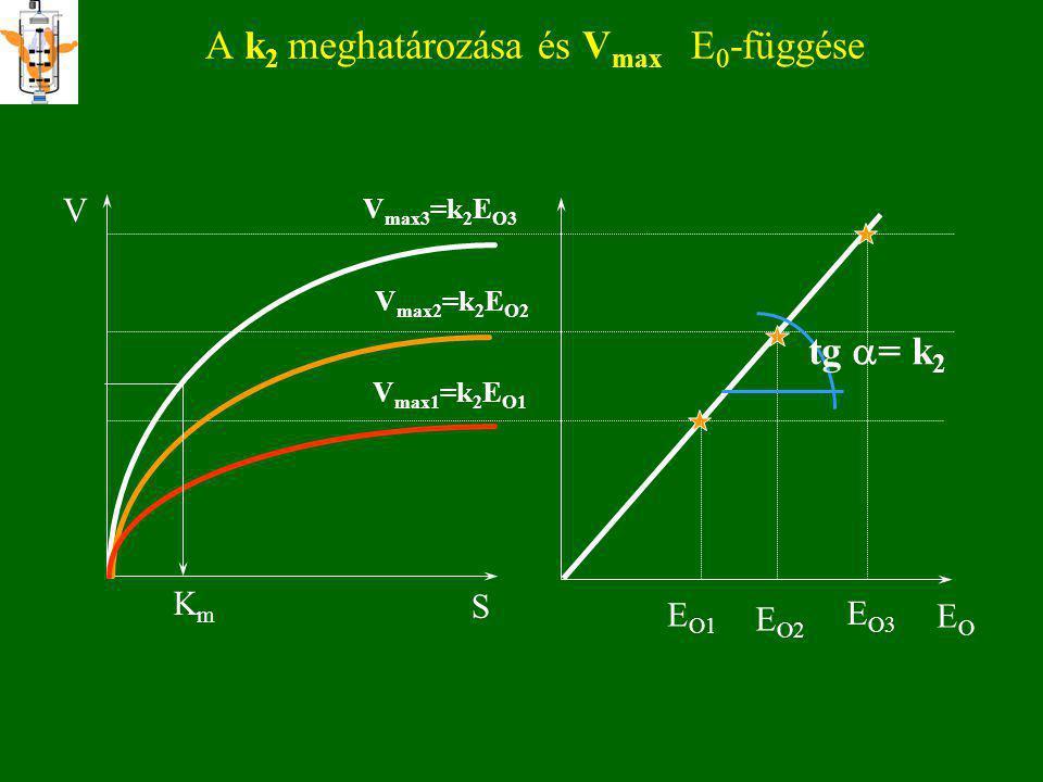 V 0 értelmezése V 0 = ( dS/dt ) t=0 S t P t V 0 = ( dP/dt ) t=0 A M-M és B-H egyenletekben V kezdeti reakciósebességet jelent!!!