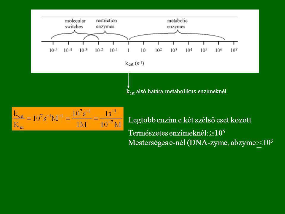 A kinetikai paraméterek értelmezése 2 k 1 10 7 -10 10 dm 3 mol -1 min -1  max. érték(10 11 ) kis molekulák diffúzió-sebessége  k -1 10 2 -10 6 min -