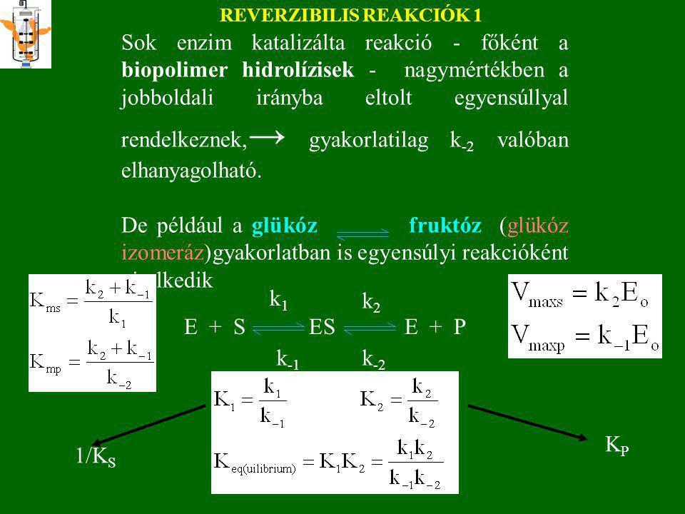 k cat alsó határa metabolikus enzimeknél Legtöbb enzim e két szélső eset között Természetes enzimeknél: >10 5 Mesterséges e-nél (DNA-zyme, abzyme:<10