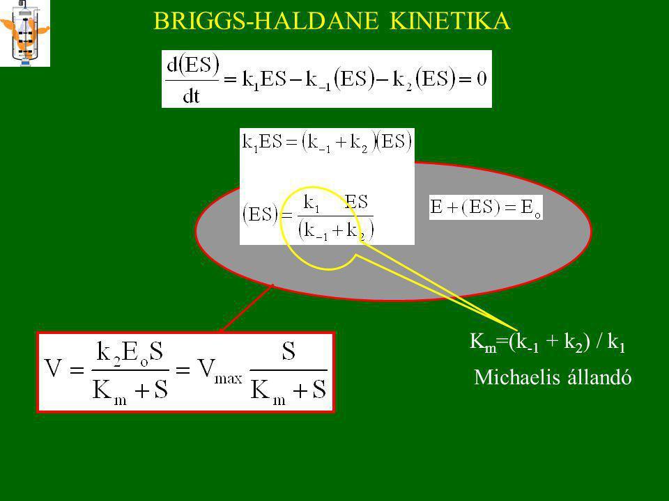 BRIGGS-HALDANE KINETIKA S   Eo vagy Eo / S  1 és (k 1 ES  k -1 (ES) ill. k 1 ES  k 2 (ES)) d(ES)/dt =0 steady state. Briggs, G. E., and Haldane,