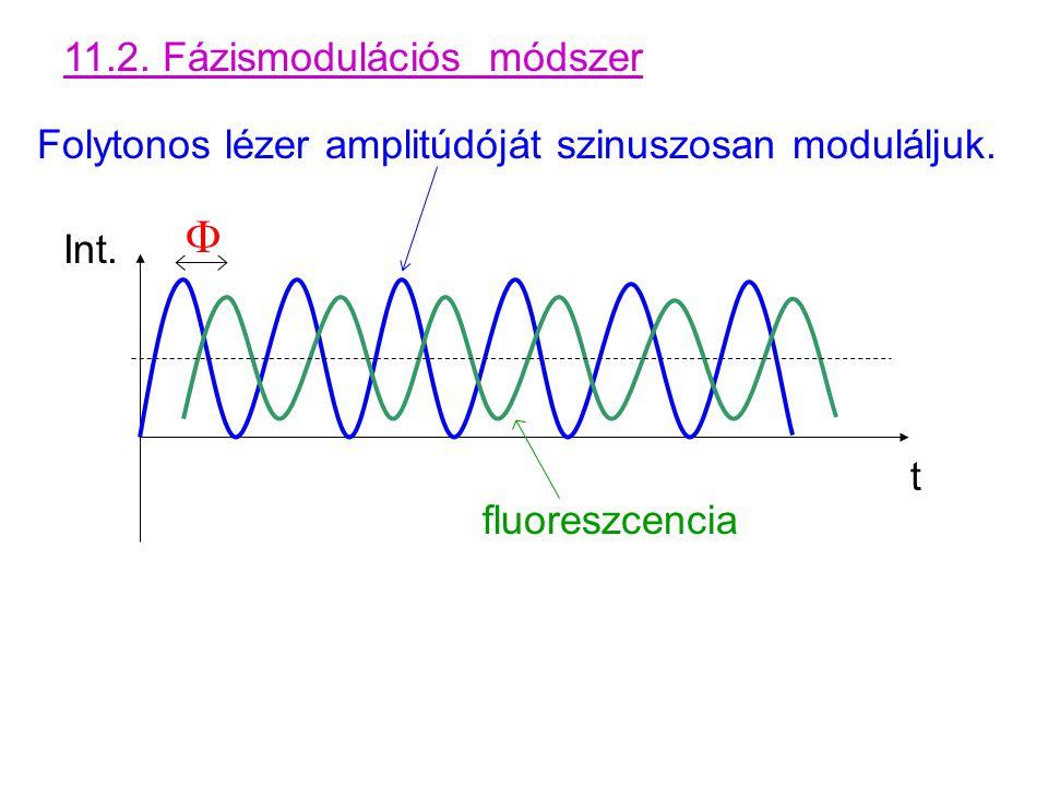 11.2. Fázismodulációs módszer Folytonos lézer amplitúdóját szinuszosan moduláljuk.  fluoreszcencia Int. t