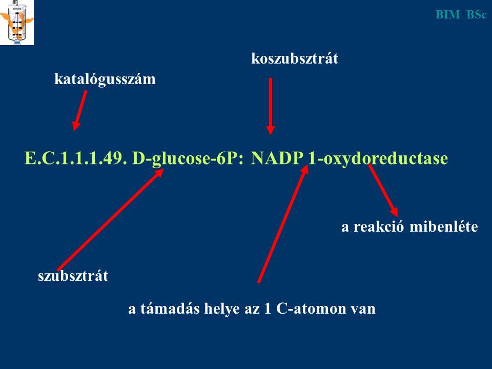 E.C.1.1.1.49. D-glucose-6P: NADP 1-oxydoreductase a reakció mibenléte koszubsztrát katalógusszám szubsztrát a támadás helye az 1 C-atomon van BIM BSc