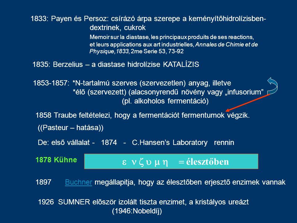  élesztőben 1858 Traube feltételezi, hogy a fermentációt fermentumok végzik. 1897Buchner megállapitja, hogy az élesztőb