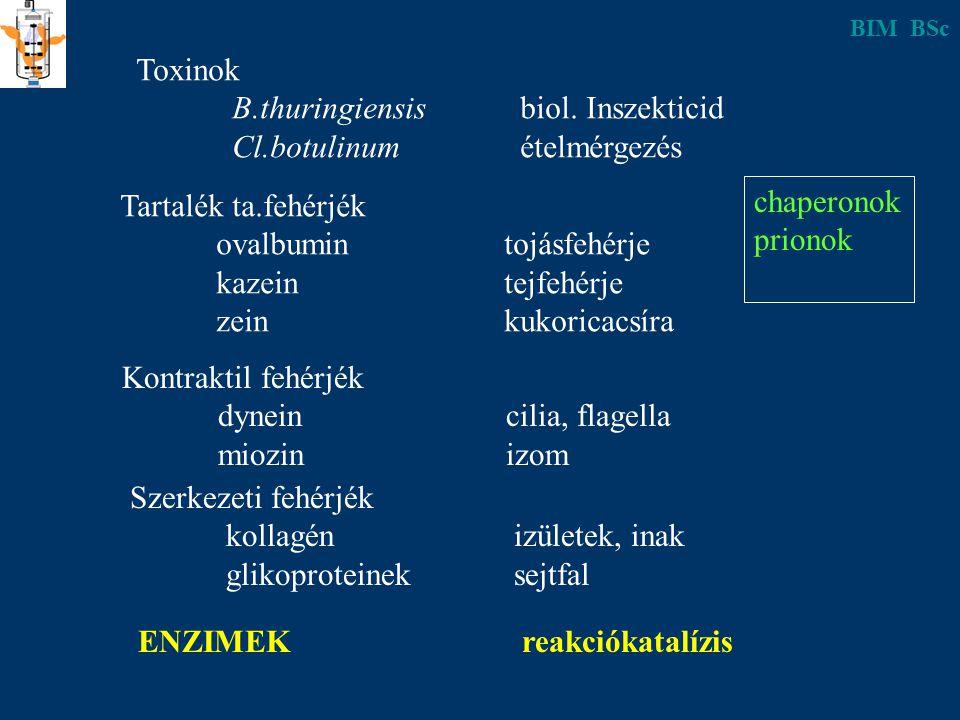 Toxinok B.thuringiensisbiol. Inszekticid Cl.botulinumételmérgezés Tartalék ta.fehérjék ovalbumintojásfehérje kazeintejfehérje zeinkukoricacsíra Kontra