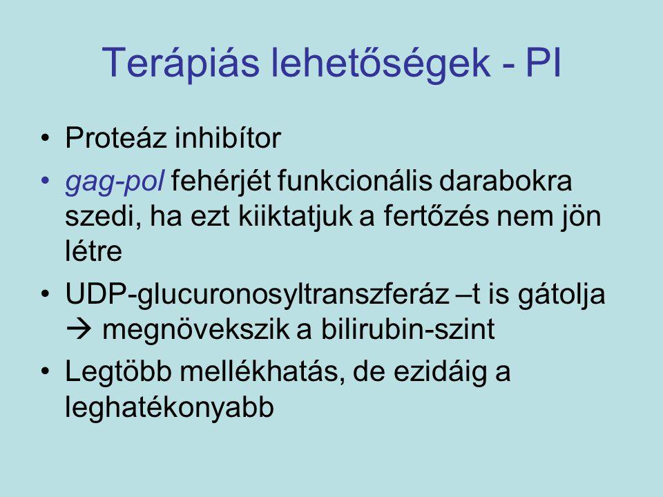 Terápiás lehetőségek - PI Proteáz inhibítor gag-pol fehérjét funkcionális darabokra szedi, ha ezt kiiktatjuk a fertőzés nem jön létre UDP-glucuronosyl