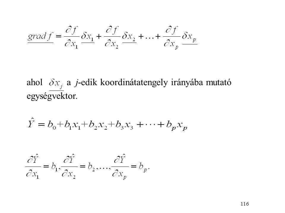 117 A gradiens-függvény: A gradiens irányában úgy haladhatunk, ha az x 1 tengely mentén b 1, az x 2 tengely mentén b 2 nagyságú stb.