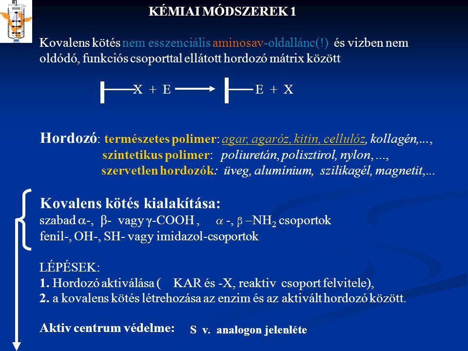 KÉMIAI MÓDSZEREK 1 Kovalens kötés nem esszenciális aminosav-oldallánc(!) és vizben nem oldódó, funkciós csoporttal ellátott hordozó mátrix között X + E E + X Hordozó : természetes polimer: agar, agaróz, kitin, cellulóz, kollagén,..., szintetikus polimer: poliuretán, polisztirol, nylon,...,agar, agaróz, kitin, cellulóz szervetlen hordozók: üveg, alumínium, szilikagél, magnetit,...