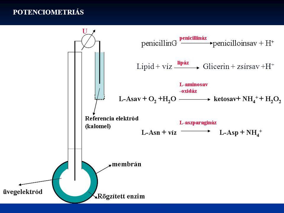Lipid + vízGlicerin + zsírsav +H + POTENCIOMETRIÁS