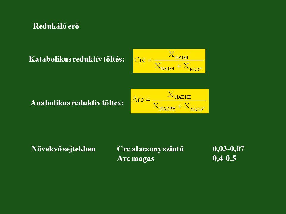 Redukáló erő Katabolikus reduktív töltés: Anabolikus reduktív töltés: Növekvő sejtekben Crc alacsony szintű 0,03-0,07 Arc magas 0,4-0,5