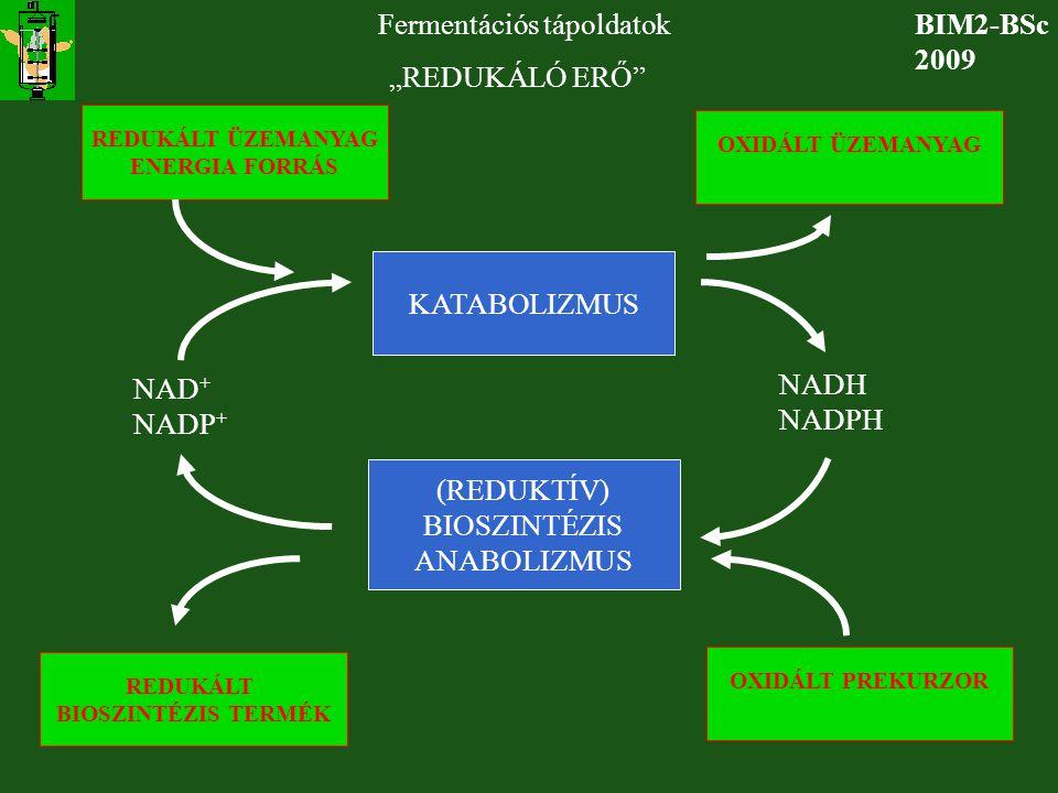 """BIM2-BSc 2009 Fermentációs tápoldatok """"REDUKÁLÓ ERŐ"""" KATABOLIZMUS (REDUKTÍV) BIOSZINTÉZIS ANABOLIZMUS NAD + NADP + NADH NADPH REDUKÁLT ÜZEMANYAG ENERG"""