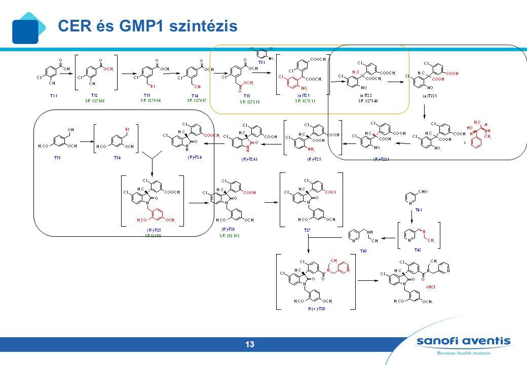 13 CER és GMP1 szintézis